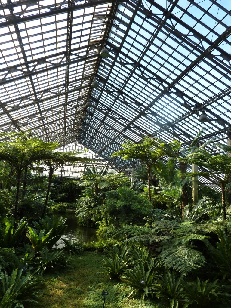 Garfield Park Conservatory, Aquatic House